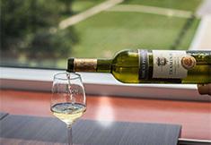 Le vin d'Ilok, un trésor croate qui a survécu