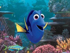Finding Dory: een vergeetachtig blauw visje in een onvergetelijk avontuur