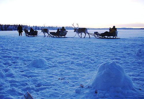 Laponie : à la découverte de l'hiver dans le grand Nord