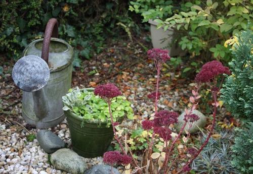 Au jardin en novembre sorties sympas en famille - Que faire au jardin en novembre ...