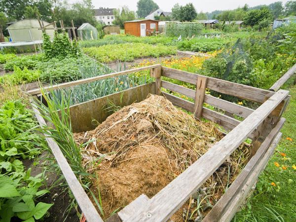 Faire un compost composer son joli potager - Faire son premier potager ...