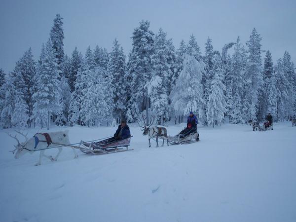 Lapland: ontdek de echte winter in het uiterste Noorden