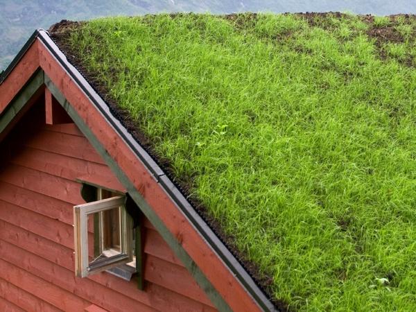 qu 39 est ce qu 39 un toit v g tal comment construire un toit v g tal. Black Bedroom Furniture Sets. Home Design Ideas