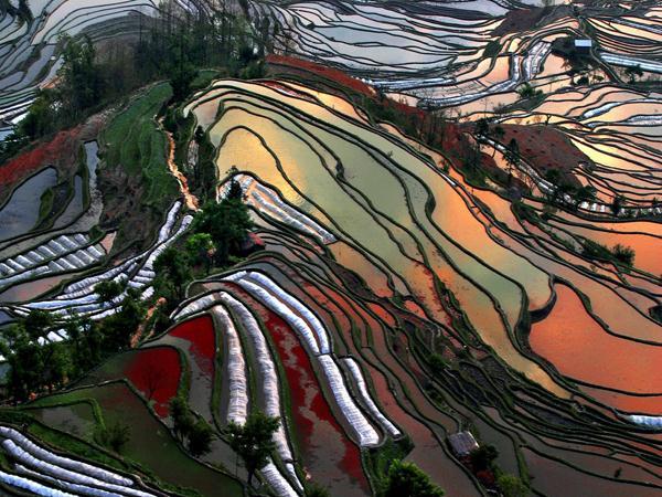 Honghe China  city pictures gallery : Honghe Hani rijstterrassen China Nieuw UNESCO werelderfgoed ...