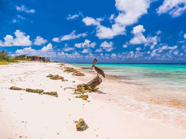 Het ABC van Aruba, Bonaire en Curaçao