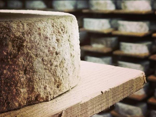 L affinage du fromage visite chez paccard reblochon un for Affinage fromage maison