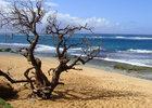 les-plages-les-plus-cheres-du-monde