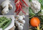 8 recettes de soupes revigorantes !