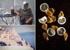 La cuisine grecque et ses petits producteurs chez Notos