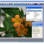 De 10 beste gratis fotobewerkingsprogramma's