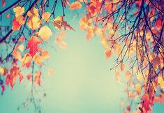 Où partir cet automne ?