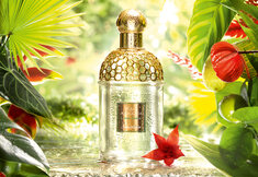 Nouvelles fragrances : on vous met au parfum