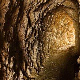 Tunnelratten