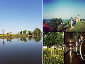 Wijn, rust en prachtige natuur: welkom in Slavonië!
