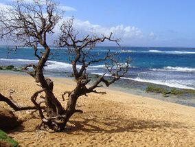 De duurste stranden ter wereld