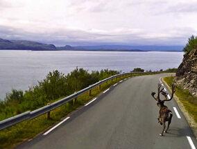 De meest bizarre Google Street View foto's