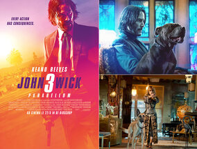 Les sorties ciné de la semaine (22 mai 2019)