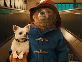 Regardez Paddington, Blue et Rox et Rouky avec l'option All Kids