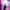 Eels - Pukkelpop 2019