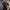 Prophets Of Rage - Pukkelpop 2019