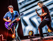 Fall Out Boy - Forest National, Bruxelles