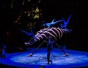 Toruk, Cirque Du Soleil - Sportpaleis
