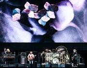 Fleetwood Mac - Festivalpark, Werchter