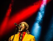 A Bowie Celebration @ De Roma, Antwerpen