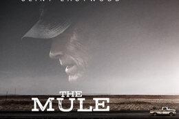 """Le coin des cinéphiles : """"La Mule"""""""