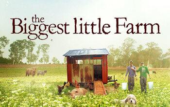 Back to basics met The Biggest Little Farm!