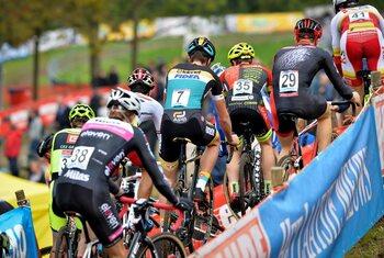 WB Dendermonde: andermaal nieuwe clash tussen Mathieu en Wout