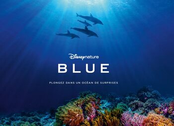 """Blue"", le dernier film du studio Disneynature, maintenant disponible dans le Movies & Series Pass"