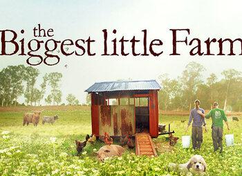 Retour à l'essentiel avec The Biggest Little Farm