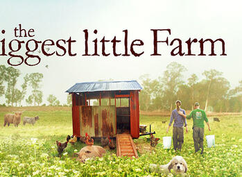 Back to basics met The Biggest Little Farm in Movies & Series!
