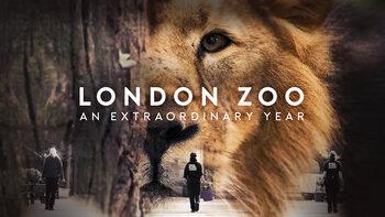 London Zoo, de mooiste dierentuin van Engeland in lockdown