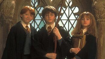 Zondag: Harry Potter-serie