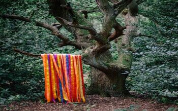 The Animal Spirits - James Holden