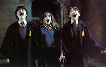 5 verwijderde scenes die je beeld van Harry Potter volledig kunnen veranderen