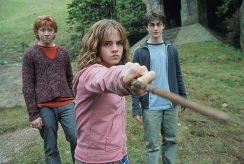 Les acteurs de la saga Harry Potter: que sont-ils devenus ?