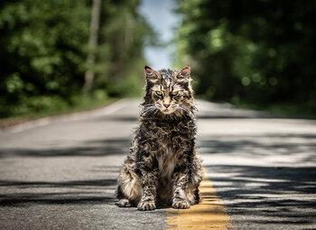 Les animaux les plus flippants de l'histoire du cinéma