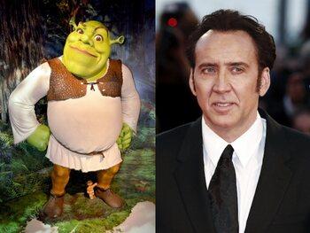 Nicolas Cage - Shrek