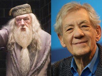 Ian McKellen - Harry Potter