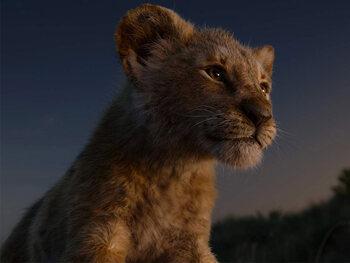 The Lion King / De Leeuwenkoning