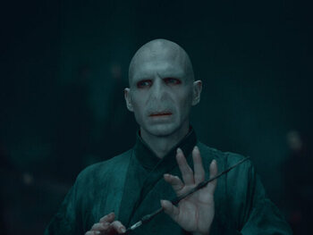 Voldemort - 'Harry Potter'