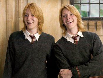 De Weasley-broers