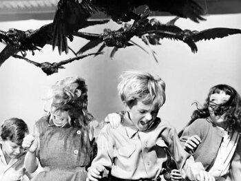 5. Les Oiseaux (1963)