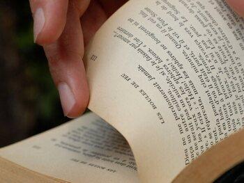 Zomernachtelijke lectuur