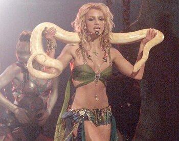 Het kunstje met de python