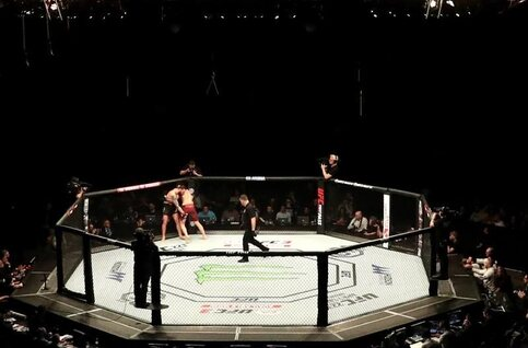 Ultimate Fighting Championship: de 10 blikvangers