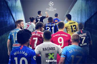 All Stars & Sports